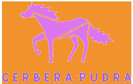 Gerbera Pudra